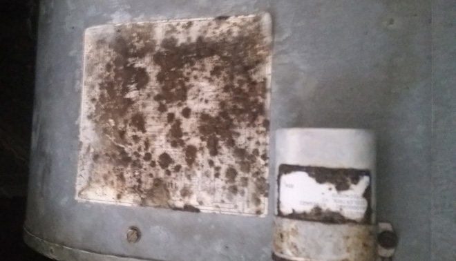 Air Duct Cleaning For Mold Spores In And Near Naples Florida